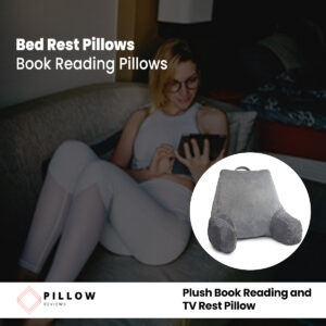 Plush Book Reading and TV Rest Pillow
